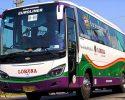 Harga Tiket Bus Lorena Semua Rute
