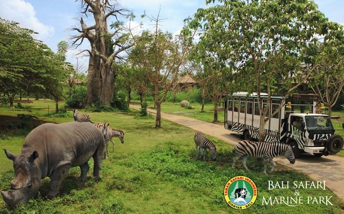 Harga Tiket Taman Safari Bali