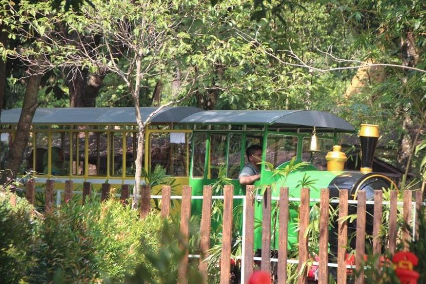 Zoo Express